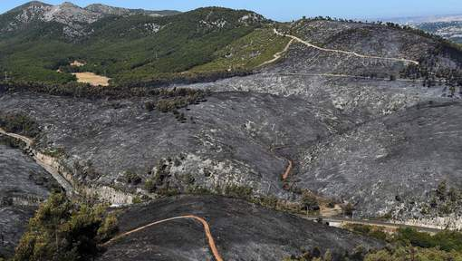 Un homme soupçonné d'avoir provoqué 17 incendies près de Marseille