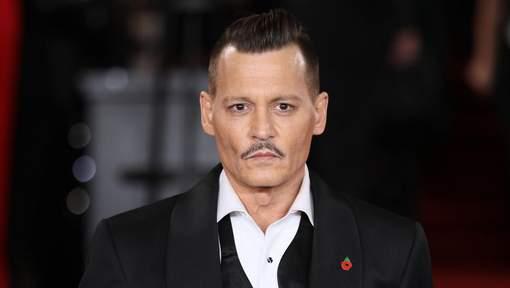 Ruiné, Johnny Depp pourrait être privé de ses propriétés
