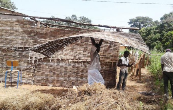 Abris provisoires : le Sénégal en compte 6.369 sous Macky Sall