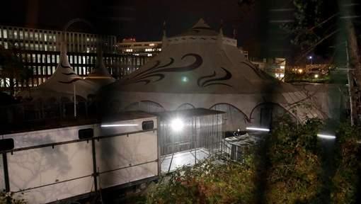 Un tigre abattu après s'être échappé d'un cirque à Paris