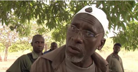 Accord de paix pour la Casamance: l'armée libère deux combattants de Salif Sadio