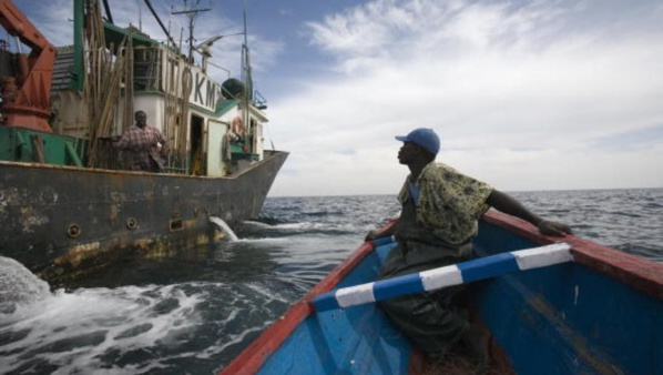 Saint-Louis : atteint par balle, un pêcheur décède à NDIAGO