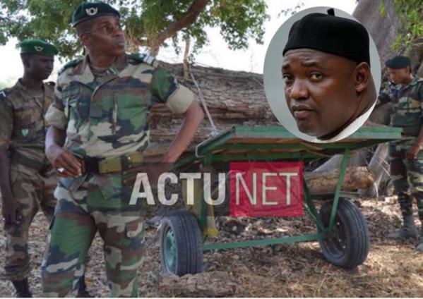 Casamance : Deux agents des Eaux et Forêts arrêtés par la Police gambienne