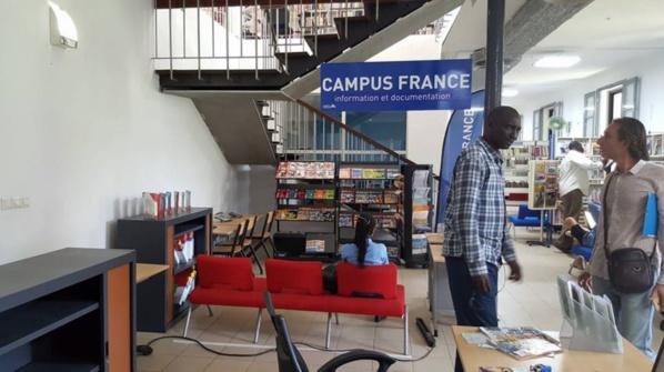Comment la France s'enrichit sur le dos des étudiants sénégalais