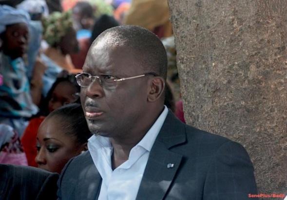 Babacar Gaye, porte parole du Pds, va enfin briser le silence