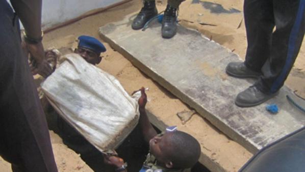 Saisie record de 72 kilogrammes de cocaïne par les Douanes sénégalaises