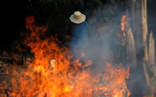 Le monde inquiet face aux incendies en Amazonie