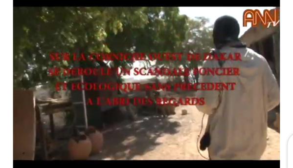 VIDEO- Corniche Ouest Dakar : Un scandale foncier et écologique à l'abri des regards