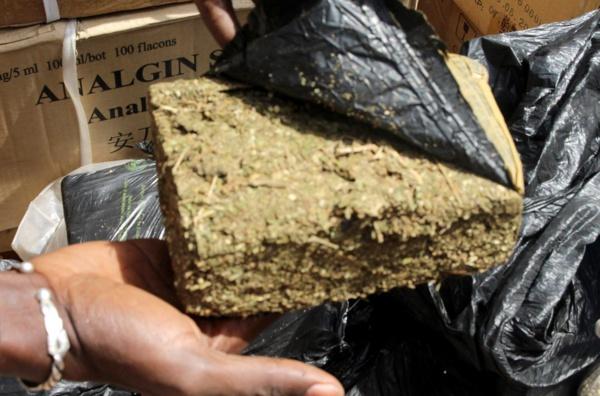 Comment la Douane a intercepté 1376 kg de chanvre indien