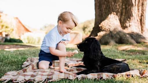 Le Prince George accusé de maltraitance animale pour cette photo