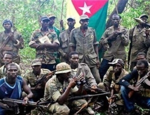 Processus de paix en Casamance: les combattants du MFDC prennent les choses en main