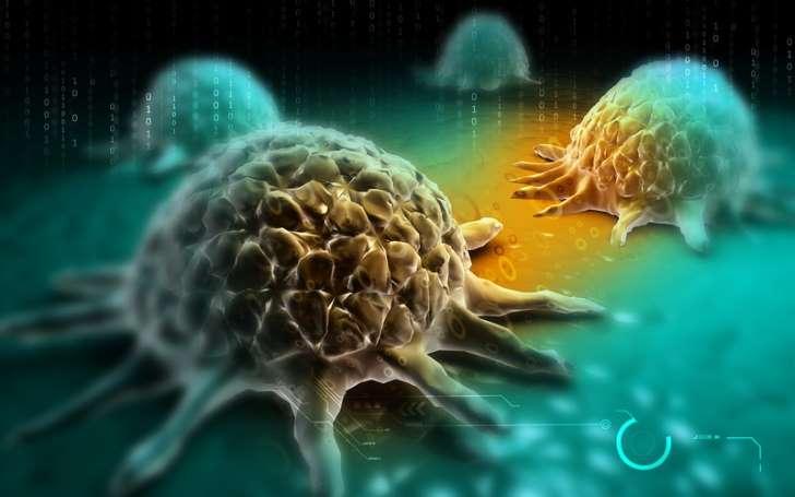 Sucre : l'aliment qui nourrit et aide le cancer à se développer