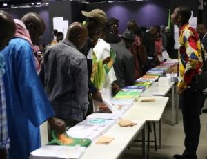 Vidéo-Désordonnées élections législatives: la bagarre de Montreuil