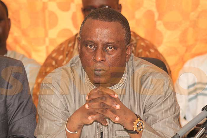 Cheikh Tidiane Gadio – Ses premiers mots, le calvaire qu'il…