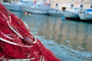 Pour échapper à la police, un Italien balance à la mer un migrant Sénégalais