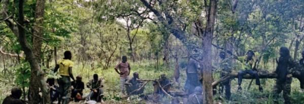 Massacre de Boffa : une famille signale un disparu