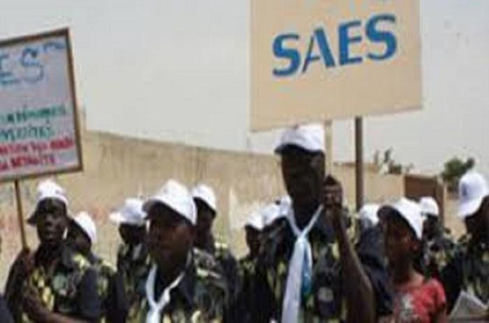 Enseignement Supérieur : Le SAES  Avertit Cheikh Oumar HANN
