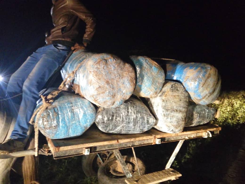 Saisie de 660 kilogrammes de chanvre indien