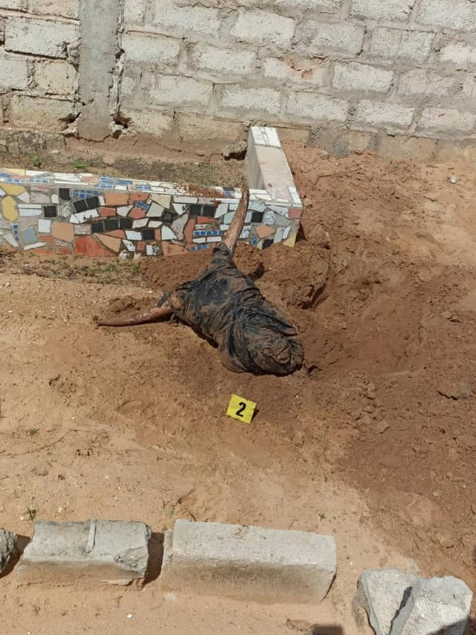 Mbour : La tête et des pattes de bœuf noir enterrées au cimetière de Téfess