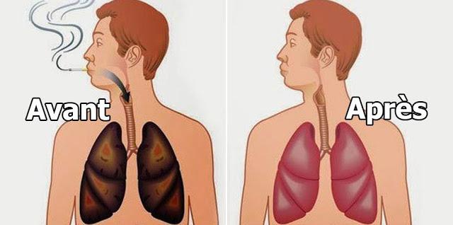 Le saviez-vous? Ces  aliments qui nettoient vos poumons des goudrons et de la nicotine