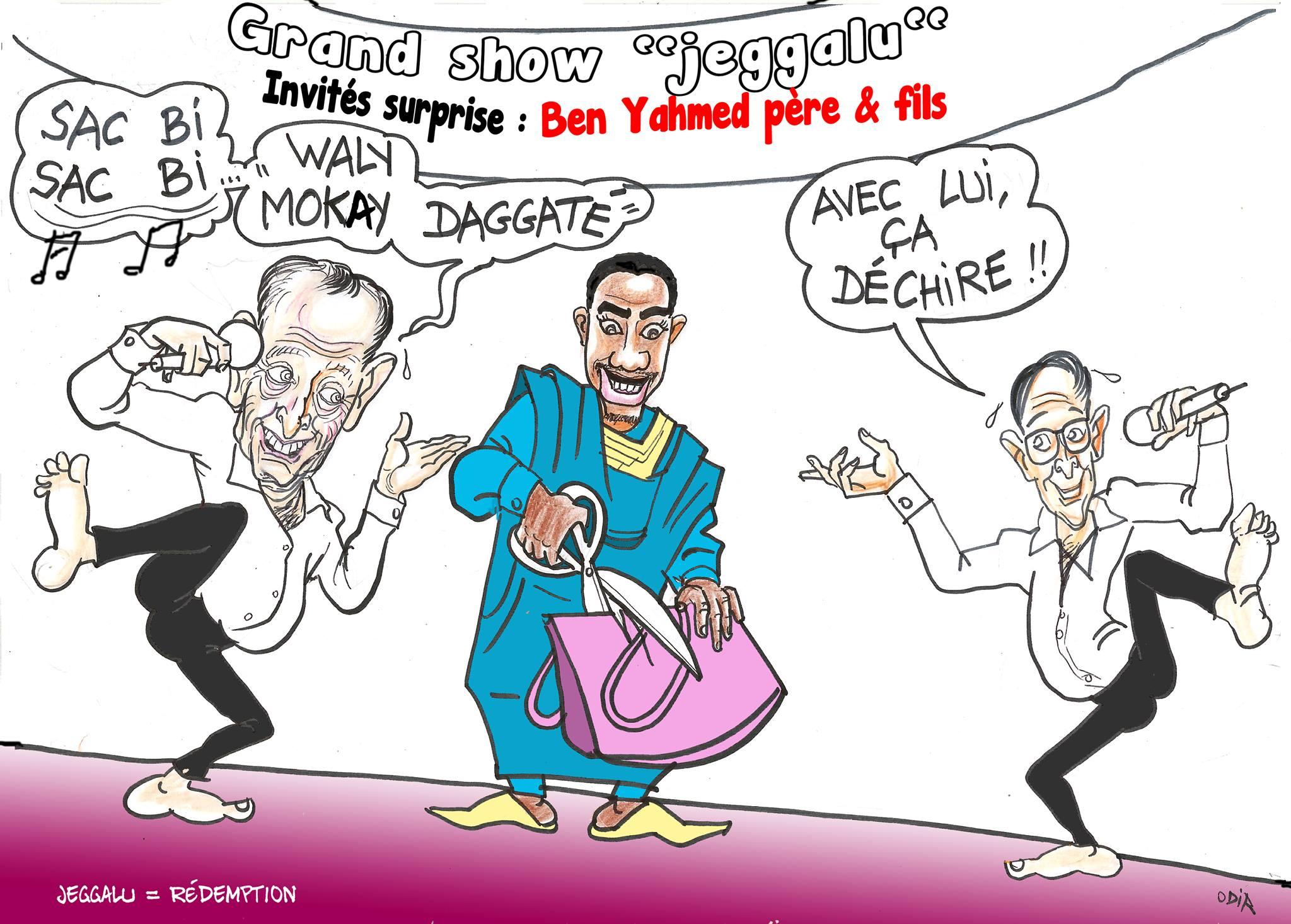 """Arrêt sur image ! La caricature d'Odia sur la der des ders """"Walymania"""""""