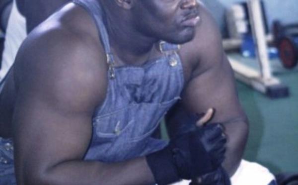 """Tyson à Gris Bordeaux   """" Je vais te corriger, je ne suis pas ton égal"""""""