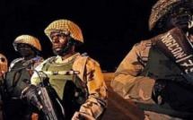 Gambie: Pourquoi l'intervention a été retardée!