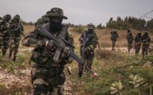 Gambie : 7 mille hommes seront mobilisés par la CEDEAO