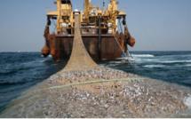 Pêche illégale : Le Sénégal perd 400 milliards par an