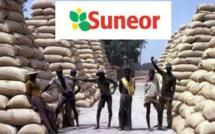 Suneor Kaolack- La catastrophe plane en permanence