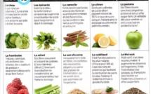 10 aliments brûle-graisses