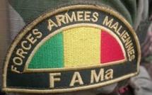 Deux soldats maliens tués dans une attaque à Menaka