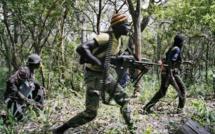 Casamance : Des brigands ont braqué des agents du programme Puma, emportant avec eux leur voiture