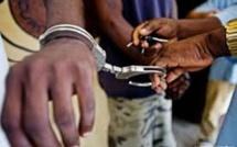 Trafic de faux billets : ''Alaye Djité'', le complice de Thione Seck encore arrêté au Mali