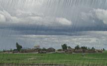 Hivernage : Kolda reçoit sa première pluie