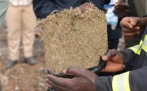 Trafic de drogue: Saisie record de 2, 282 tonnes de chanvre indien à...