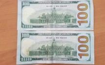 Saly : Une bande internationale de faux monneyeurs avec des centaines de dollars interpellée par la Police.