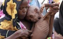 PLUS DE 45 PAYS AFRICAINS RÉUNIS EN CONFÉRENCE VIRTUELLE SUR LA CRISE DE FAIM