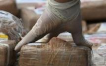 Saisie de 675 kg de cocaïne à Ngaparou : Un entrepreneur belge arrêté, ses complices activement recherchés