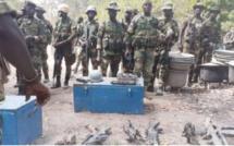 Casamance-Nord-Sindian: L'armée détruit six (06 ) champs de chanvre indien