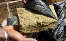 Lutte contre la drogue : L'armée détruit 6 champs de chanvre indien