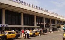 """Aéroport Lss de Dakar :   La douane saisit 118 kg de drogue """" khat """" ce vendredi"""
