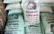 Rebondissement suite à la LP de Massata Ndiaye sur le détournement et vol de 124 tonnes de riz: Le juge ordonne l'arrestation d'Abdou Konté