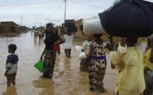Malgré les écoles inondées, les abris provisoires, les déficits notés, l'Etat force la rentrée, donc en avant pour le ''ubbi tey, khuss tey !''